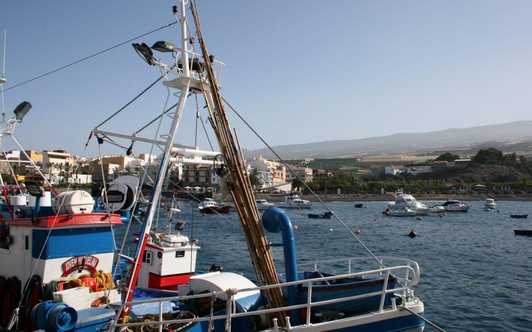 Proyectos puertos canarios part 8 for Oficina virtual gobierno de canarias