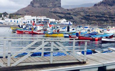 Puertos Canarios activa el sistema para gestionar la solicitud de servicios portuarios por vía electrónica en todas las Islas